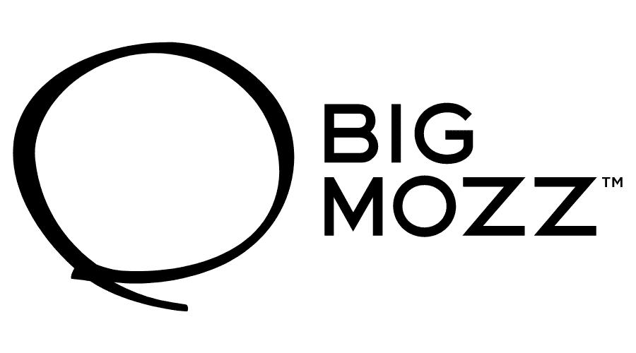 Big Mozz Logo Vector